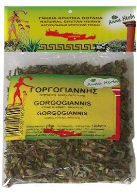 Gorgogiannis